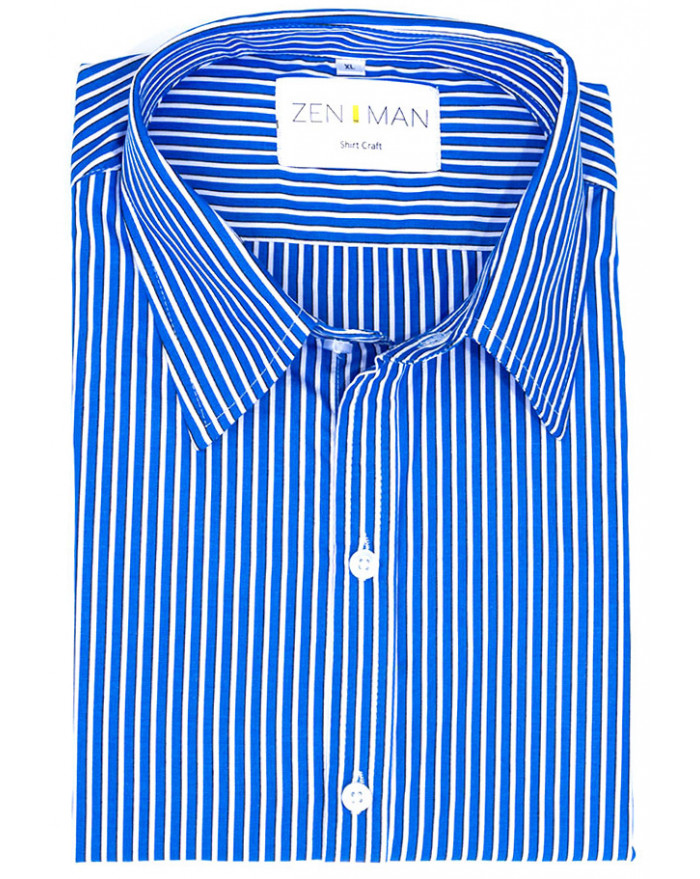 Cary Striped Shirt